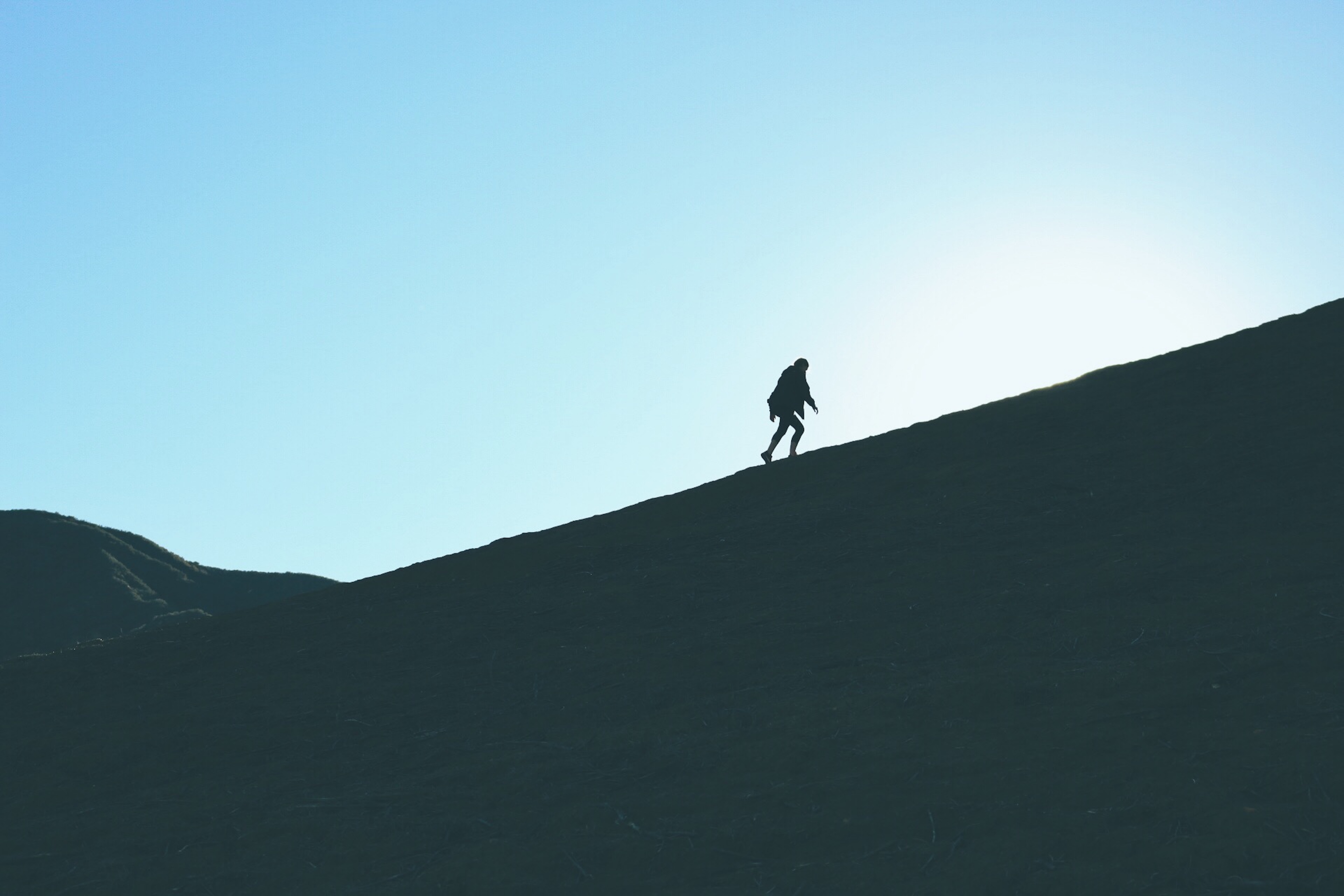 motivation_vs_determination.jpg